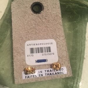 Anthropologie Jewelry - Anthropologie earrings - never worn